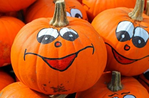 pumpkins-469641__340
